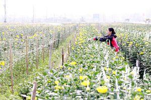 Không để nông dân đơn độc thoát nghèo