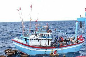 Kiên tâm bám biển: Bài 2 - Sức mạnh từ chính ngư dân