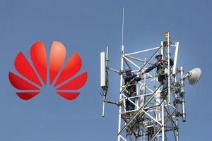 Mỹ phải 'trả' 1 tỷ USD để 'loại bỏ' Huawei