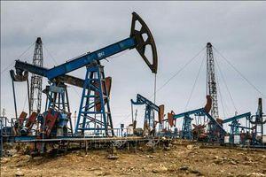 Giá xăng, dầu (25/6): Biến động nhẹ