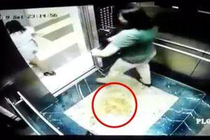 BQL chung cư xử phạt chủ nhà có khách tiểu bậy trong thang máy đúng hay sai?