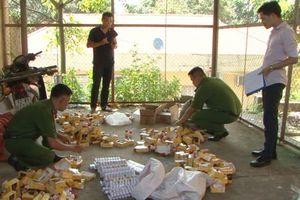 Lạng Sơn: Bắt giữ hàng nghìn lọ thuốc bảo vệ thực vật không được phép sử dụng ở Việt Nam