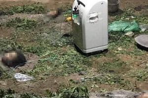 Quảng Bình: Rủ nhau tắm sông, 3 chị em ruột chết đuối thương tâm