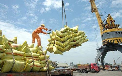 Xuất khẩu gạo dự báo nhiều khó khăn