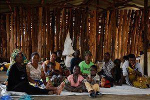 Liên hợp quốc đánh giá cao việc châu Phi 'mở rộng cửa' đón người tị nạn
