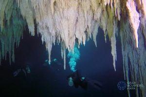 Khám phá hang động dưới nước lớn nhất thế giới ở Mexico
