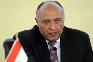Ai Cập và Nga đồng nhất quan điểm về nhiều vấn đề Trung Đông