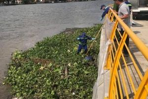 Một ngày phát hiện 2 thi thể nam giới trên sông Sài Gòn