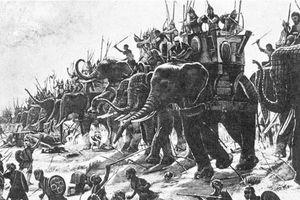 Người xưa sử dụng voi làm 'vũ khí sống' điêu luyện thế nào?