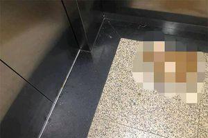 Kinh hãi phóng uế giữa thang máy chung cư ở Hà Nội