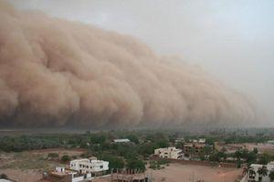 Bụi Sahara, kẻ 'phá hoại' mùa hè Caribe