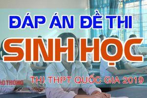 Đáp án đề thi môn Sinh học THPT quốc gia 2019 Full mã đề