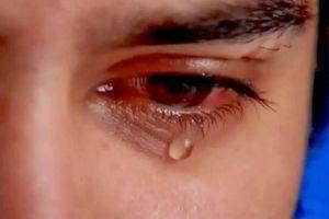 Những ông bố khóc