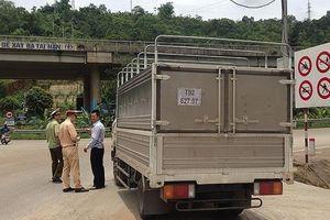 Quản lý thị trường Lào Cai: Dồn lực chống dịch tả lợn châu Phi