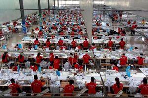 Quảng Bình: Nhiều chỉ số phát triển kinh tế - xã hội tăng cao trong 6 tháng đầu năm