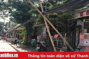 TP Thanh Hóa: Cáp viễn thông sà xuống đường gây nguy cơ mất an toàn