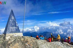 Xem xét sửa sách giáo khoa khi đỉnh Fansipan cao thêm 4,3 mét