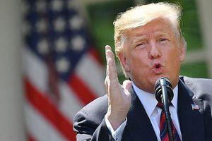 ÔngTrump chê lãnh đạo Iran 'không thông minh'