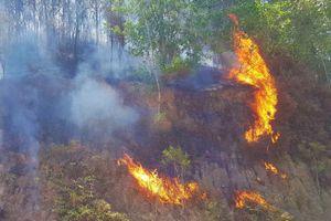 4 vụ cháy rừng liên tiếp trong hai ngày ở Hà Tĩnh