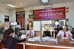 Agribank góp phần đẩy nhanh quá trình xử lý nợ xấu