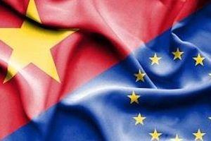 Sức hấp dẫn từ FTAs và cơ hội cho Việt Nam