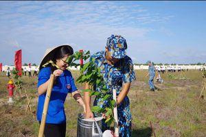 Vùng 2 Hải quân phát động 'Tết trồng cây nhớ ơn Bác Hồ'