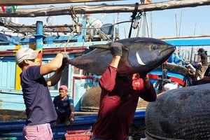 Nhóm công tác nghề cá ASEAN nhóm họp tại Việt Nam
