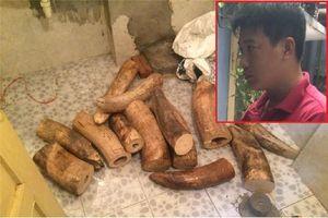 Bộ Công an bắt vụ vận chuyển ngà voi 'khủng'
