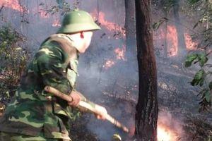 Thừa Thiên – Huế: Cháy rừng trên diện rộng tại nhiều khu vực