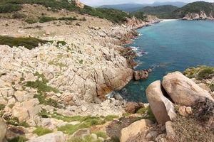 Ninh Thuận: Tour Trekking Băng Rừng Ngắm Biển (1 ngày)