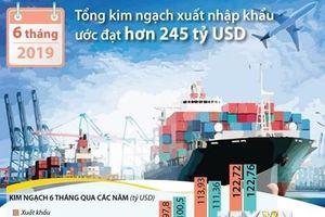 Tổng kim ngạch xuất nhập khẩu 6 tháng đạt 245 tỷ USD