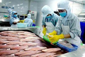Xuất khẩu cá tra vào EU: Bứt phá ngoạn mục?