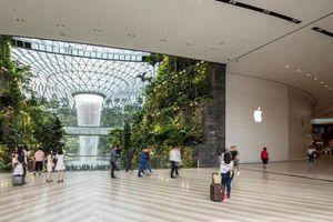 Apple mở cửa hàng ở sân bay Changi, dân buôn Việt sẽ vui như trẩy hội?