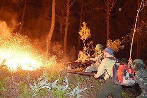 Hà Tĩnh: Tiếp tục túc trực để ứng phó, đề phòng đám cháy bùng phát trở lại