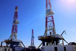 SDX Energy phát hiện dầu ở Ai Cập