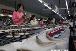 Séc: EVFTA có vai trò lớn trong thúc đẩy hợp tác kinh tế với Việt Nam