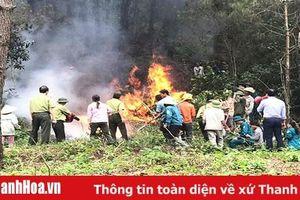 Huyện Hà Trung tăng cường công tác phòng cháy, chữa cháy rừng