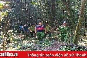 Hạt Kiểm lâm Bá Thước: Chủ động thực hiện công tác bảo vệ rừng tận gốc
