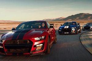 Ford sắp trình làng mẫu xe mạnh mẽ nhất