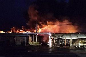 Cháy hơn 100 gian hàng của người Việt ở Magnitogorsk (LB Nga)