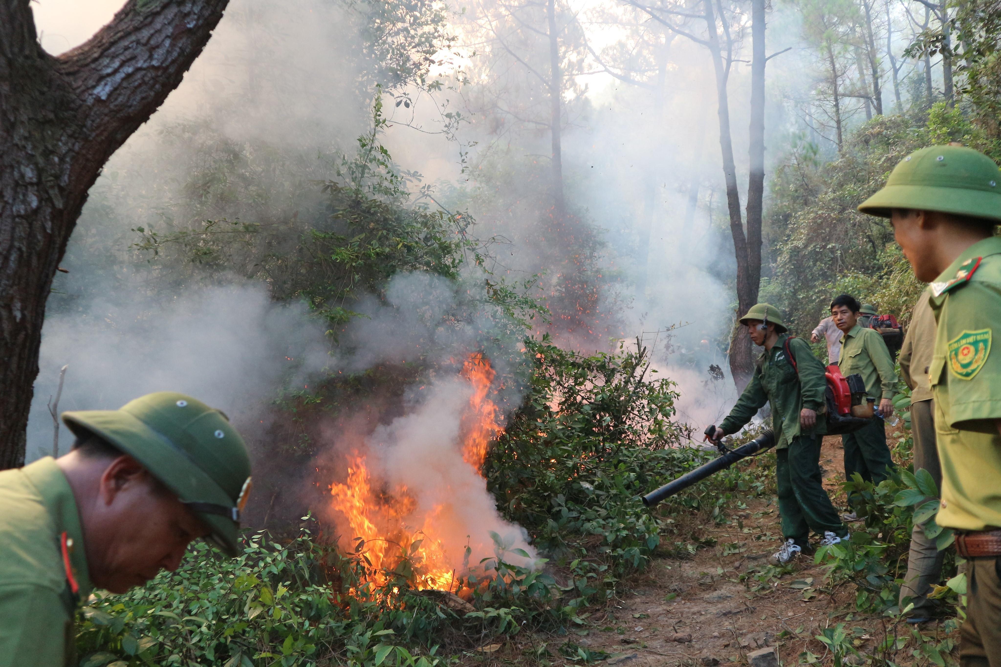 Khám nghiệm hiện trường khu vực khởi phát gây cháy rừng ở Hà Tĩnh