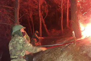 Một phụ nữ tử vong khi tham gia chữa cháy rừng tại Nghệ An