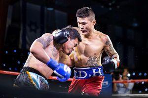 Cao thủ Flores 'gây sóng', Vua boxing Việt nóng mắt đòi tỉ thí