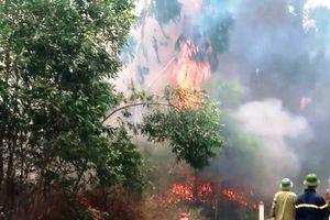 Nghệ An: Chữa cháy rừng, một phụ nữ bị lửa cuộn vào người tử vong