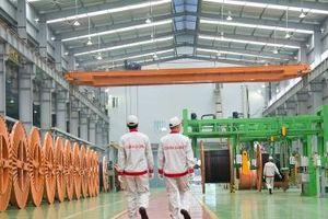 CADI-SUN: Nâng cao năng suất chất lượng, tăng sức cạnh tranh doanh nghiệp