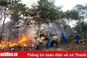 Tăng cường phòng chống cháy rừng