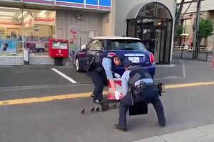 2 cảnh sát Nhật Bản chặn đường 'hộ tống' đàn vịt gây sốt MXH