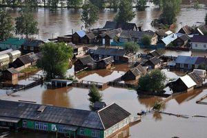 Tổng thống Nga họp khẩn chỉ đạo khắc phục hậu quả lũ lụt tỉnh Irkutsk