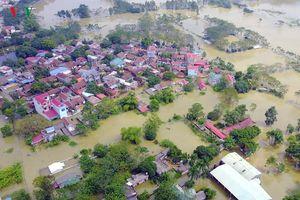 Gấp rút nâng cấp đê tả Bùi tại Hà Nội khi mùa mưa bão đang về
