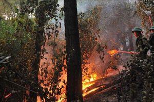 Cháy rừng liên tiếp xảy ra ở Huế: Do đạn nổ và nắng nóng?